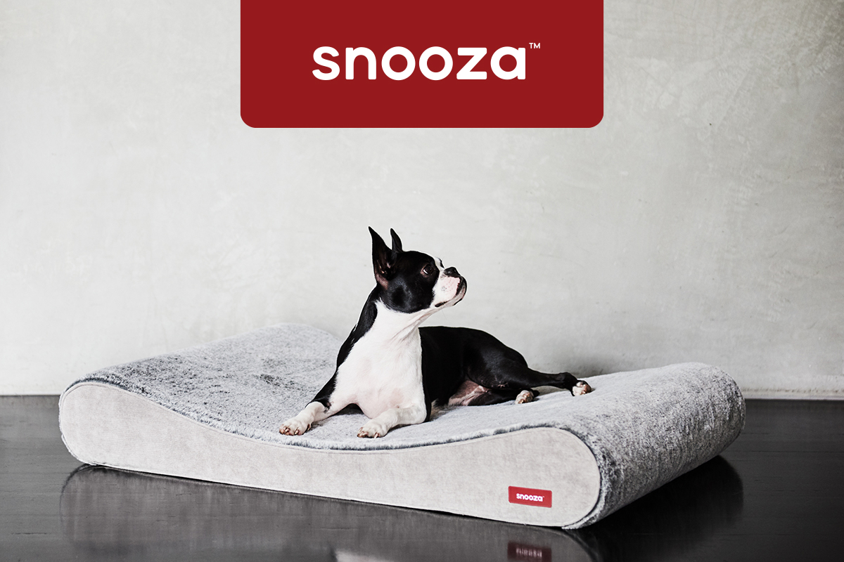 Modern eCommerce for Australia's Favourite Pet Products Brand